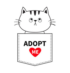 Adopt me cat sitting in the pocket red heart vector