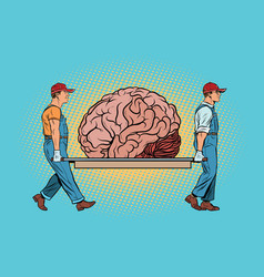 Brain bear repair vector