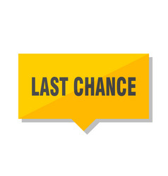 Last chance price tag vector