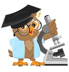 Owl professor in mortarboard holding the vector