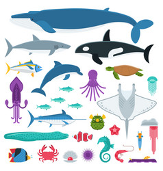 sea life and underwater animals and fishes vector image