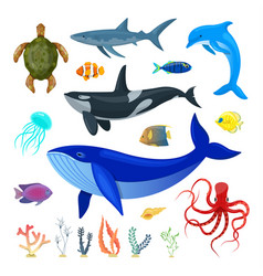 Set ocean animals vector