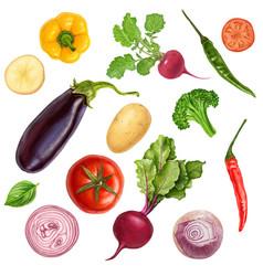 Tasty juicy veggies painting vector