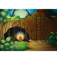 A camp fire in a cave vector image