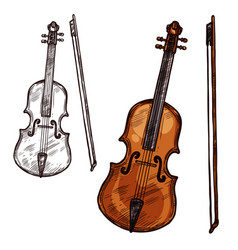 sketch violin contrabass music instrument vector image