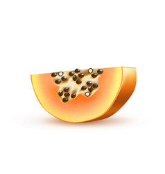 realistic 3d papaya pawpaw isolated closeup vector image