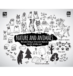 Big bundle animal and nature doodles icons objects vector