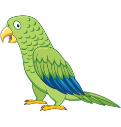 cuta parrot cartoon isolated vector image