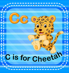flashcard letter c is for cheetah vector image