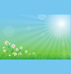 green nature background with green grass flower vector image