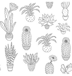 hand drawn houseplant vector image