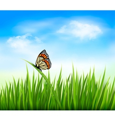 Nature grass butterfly background vector