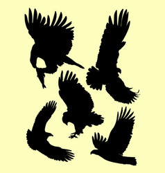 silhouette eagle in flight with wings sprea vector image
