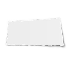 White paper tear with soft shadow isolated vector