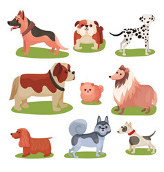 Different breeds of dog set purebred pets animal vector