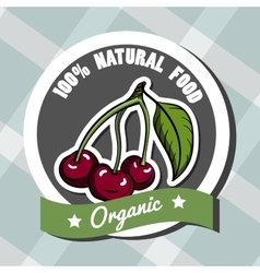 Natural Food 5 vector image