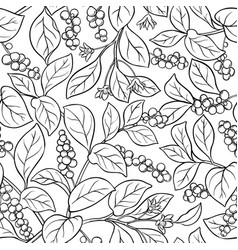 Schisandra seamless pattern vector
