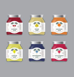 Six packaging cherry pear orange jam vector