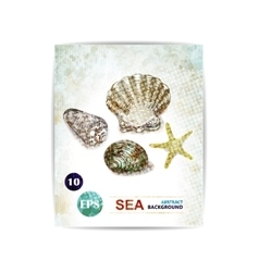 vintage marine background with seashells vector image
