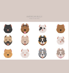 American bully dogs set color varieties different vector