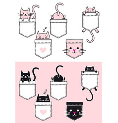 cute cat in a pocket set cat in a pocket vector image