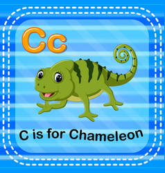flashcard letter c is for chameleon vector image