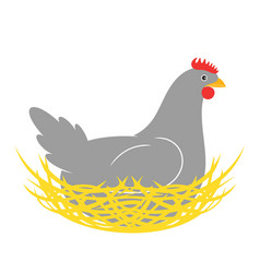 Hen nest vector