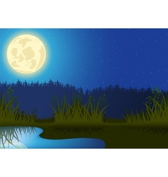 Night Landscape vector