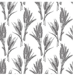 Wheat seamless pattern in sketch vector