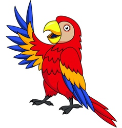 cuta parrot cartoon isolated vector image vector image