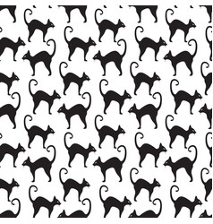 black cat seamless pattern cats repetitive vector image
