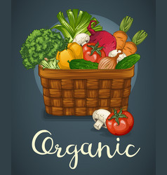 basket of fresh vegetables poster vector image
