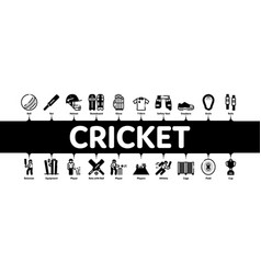 Cricket game minimal infographic banner vector