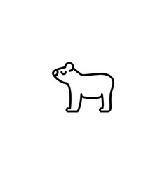 cute bear icon vector image