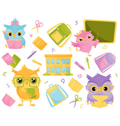 Cute wise owls and school supplies school vector
