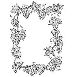 grapes frame sketch engraving vector image