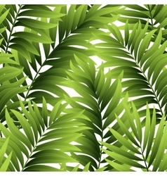 leaves palm tree seamless pattern vector image