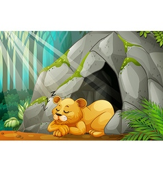 Little cub sleeping in the cave vector