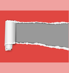Oblong torn hole from right to left in red sheet vector
