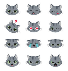 set of cute cartoon cat emotions vector image