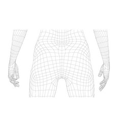 wireframe female body vector image