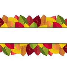 Autumn leaves on a white background vector