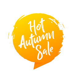 hot summer sale banner stylish design vector image