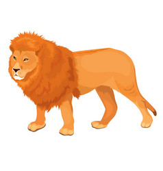 Lion walking vector