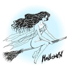 Naked enchantress flying on a broomstick vector