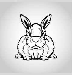 rabbit isolated on white background vector image