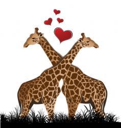 Giraffe love vector