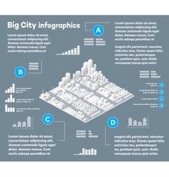3D city isometric vector