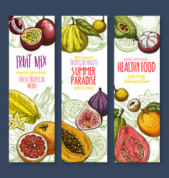 Banners exotic fresh tropical fruits mix vector