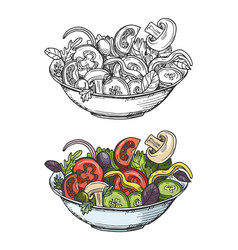 big bowl green salad with tomatoes cucumbers vector image